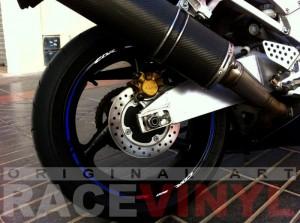 Honda CBR 954 RR Azul Race CBR 900 RR Javier trasera